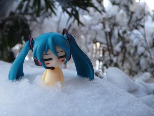 Snow_04